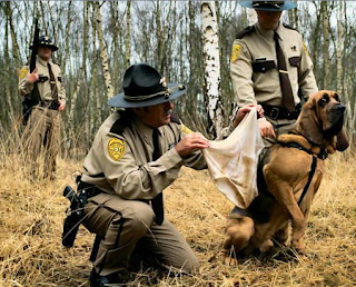 funny picture of american police dog