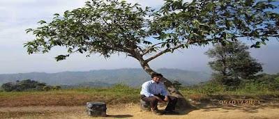 Images of Nilgiri hill resort tourist attraction in Bandarban