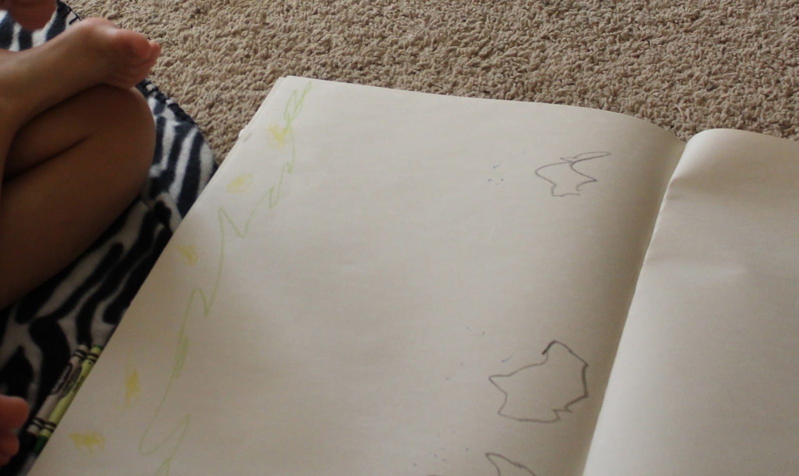little man drew a pineapple farm