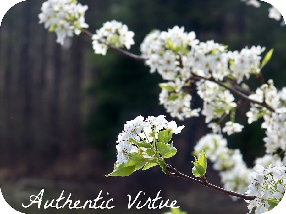 Authentic Virtue