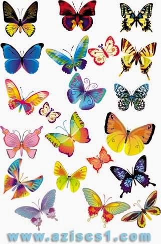 Vektor kupu-kupu aneka warna