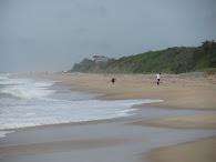 Beach Walk