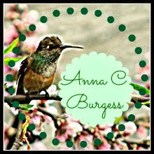 Go to Anna's blog: From A Quiet Corner