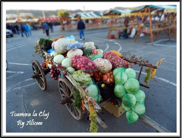 toamna-la-cluj-zilele-recoltei-legume