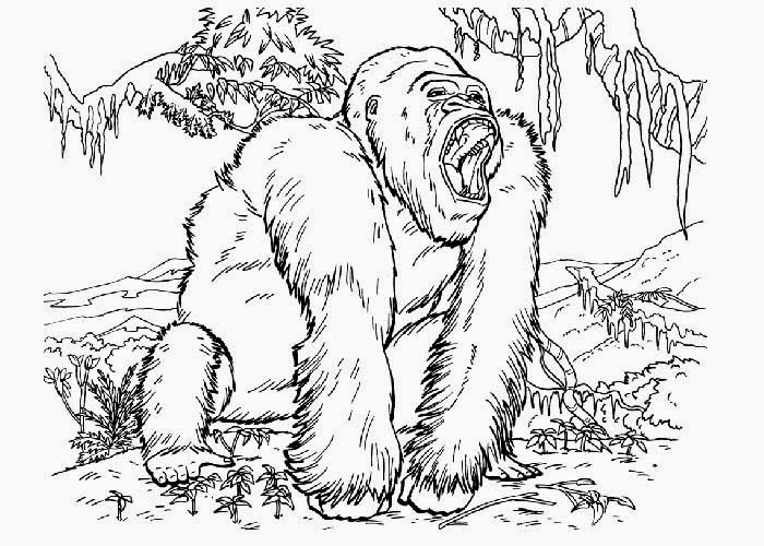 King Kong Coloring Pages Of The Apes Coloring Pages