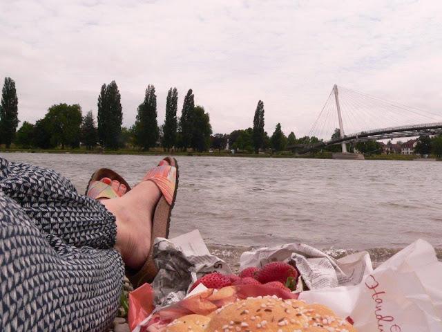 kehl urlaub camping sommer rhein ufer rheinpromenade garten der zwei Ufer Passerelle des deux rives