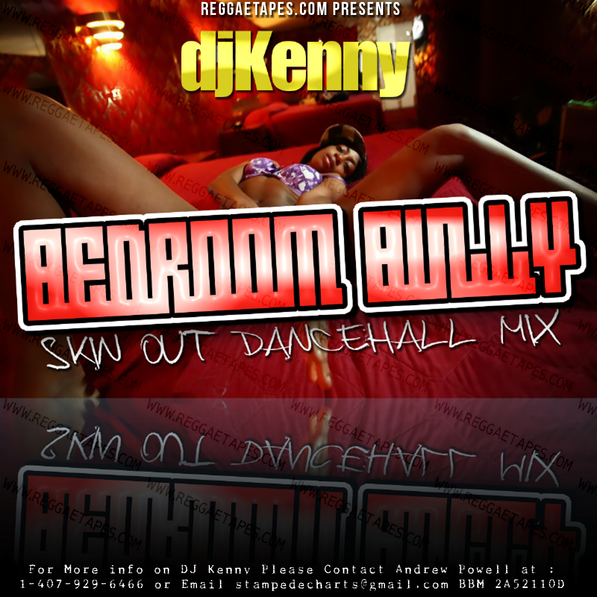 sound dj kenny bedroom bully skinout dancehall mix march 2k13