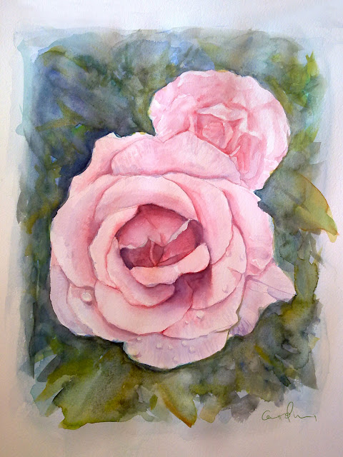 Rosa-acurela-30-x-40-cm