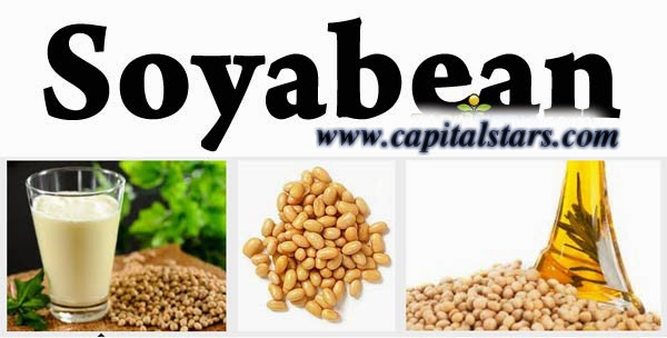 NCDEX soyabean, agri intraday, soyabean futures, Futures Trading Tips, free agri calls, Agri Commodity Tips