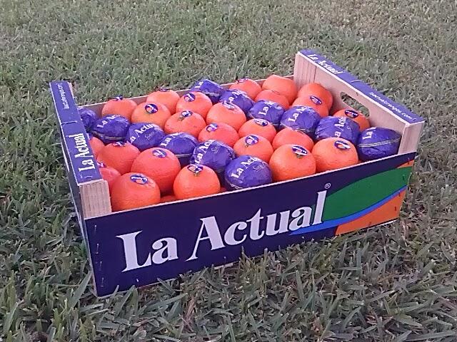 Caja de La Actual oranges