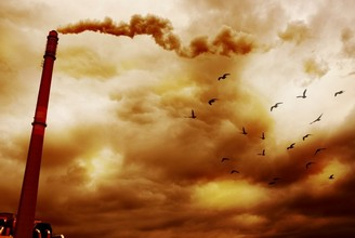 the environmental issue of acid rain in the world The causes of acid rain, how acid rain affects our environment and our health, and what regulatory actions have been put in place to reduce the pollutants that cause acid rain.
