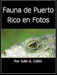 Fauna de Puerto Rico en Fotos