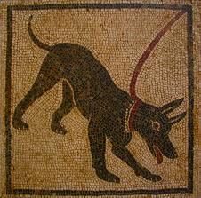 σκυλια ρώμη