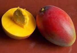 Mango. Beneficios y Propiedades