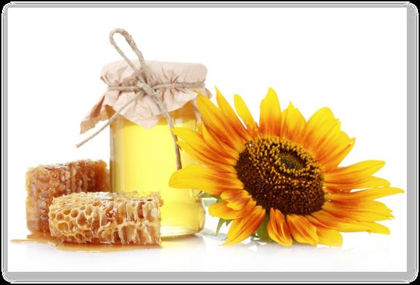 Produsele apicole sunt eficiente in afectiunile bronho-pulmonare