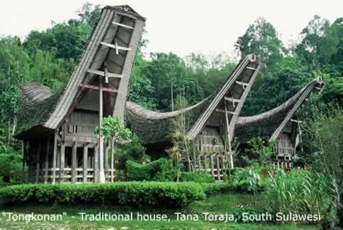 Keindahan Tongkonan Toraja