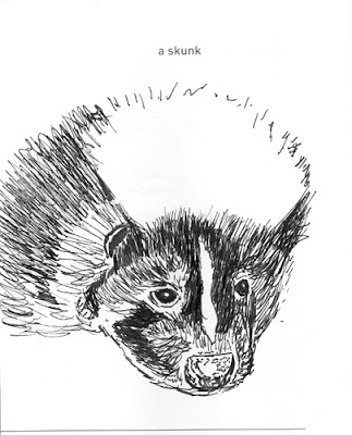Pen and Ink skunk rendered by ©Ana Tirolese