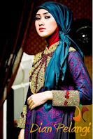 Baju Pesta Muslim Ala Dian Pelangi