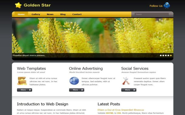 Free Gray Gold Forest CSS Website Template