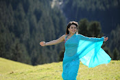 Hansika Motwani latest saree photos stills Gallery-thumbnail-9