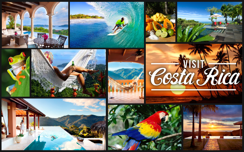 Costa Rica Plants Collage