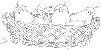 desenhos e riscos de cesta de frutas