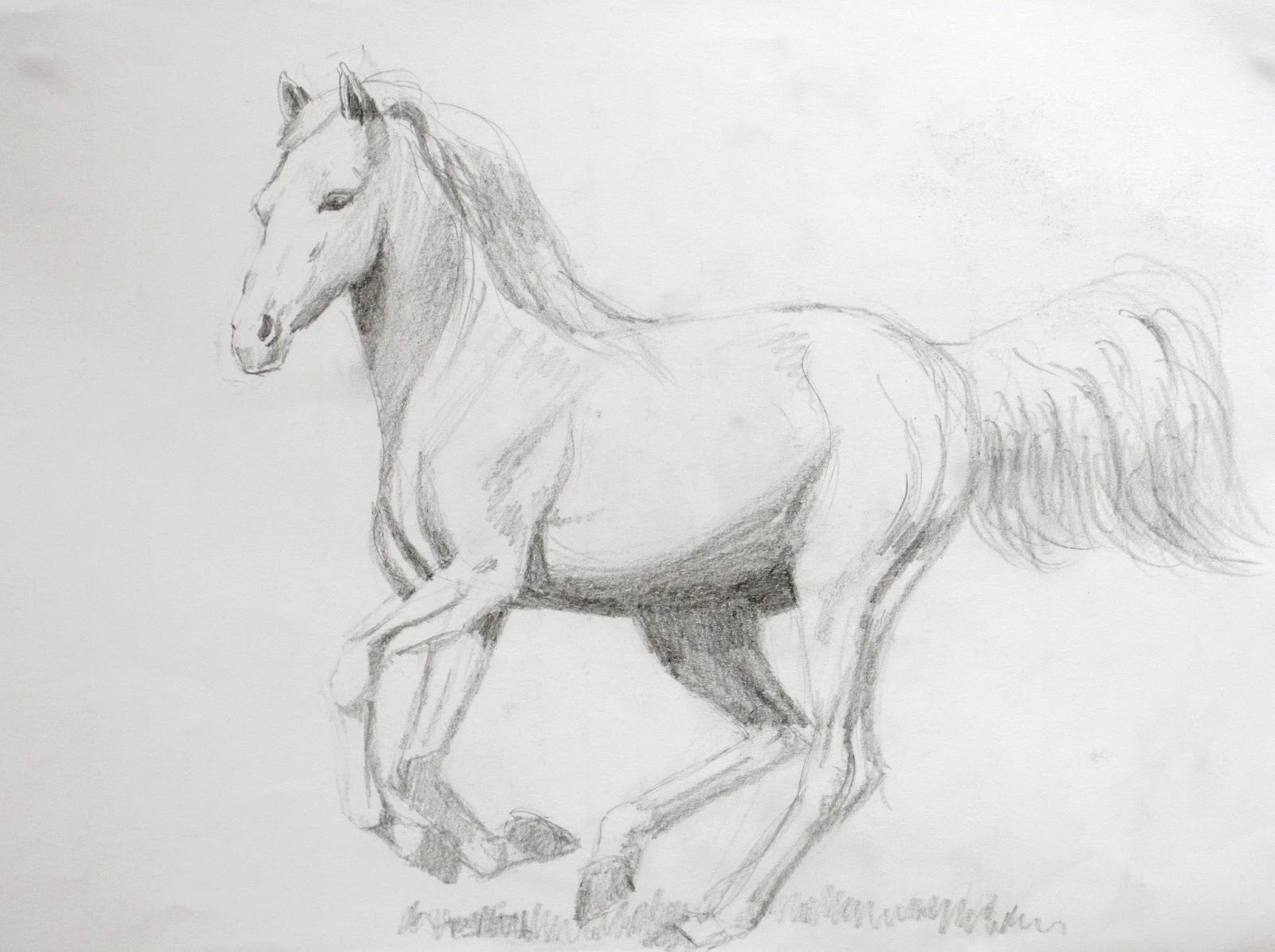 Galloping horse sketches - photo#16