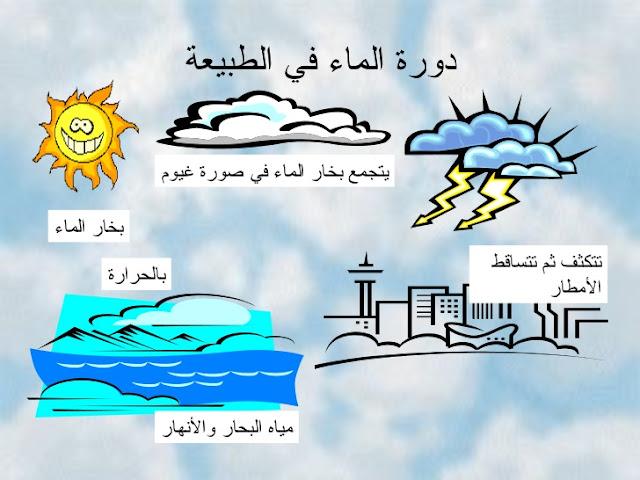 ما هي دورة الماء في الطبيعة