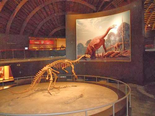 Museo Jurásico de Asturias (interior)