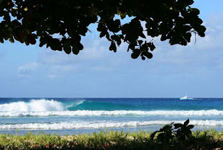 Barbados Surfing Spot