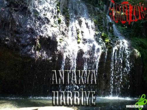 2013/08/12 Turkey2013 (Antakya-Harbiye-Antakya)