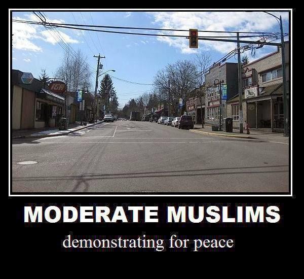 http://4.bp.blogspot.com/-WBie3RVprho/UqESYjEUSnI/AAAAAAAAJ7Q/PCwYPrb-6aA/s1600/moderate_muslims_1.jpg