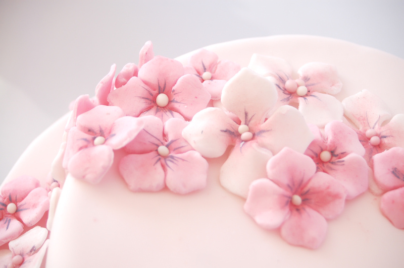 kessy 39 s pink sugar bl tenpaste schritt f r schritt. Black Bedroom Furniture Sets. Home Design Ideas