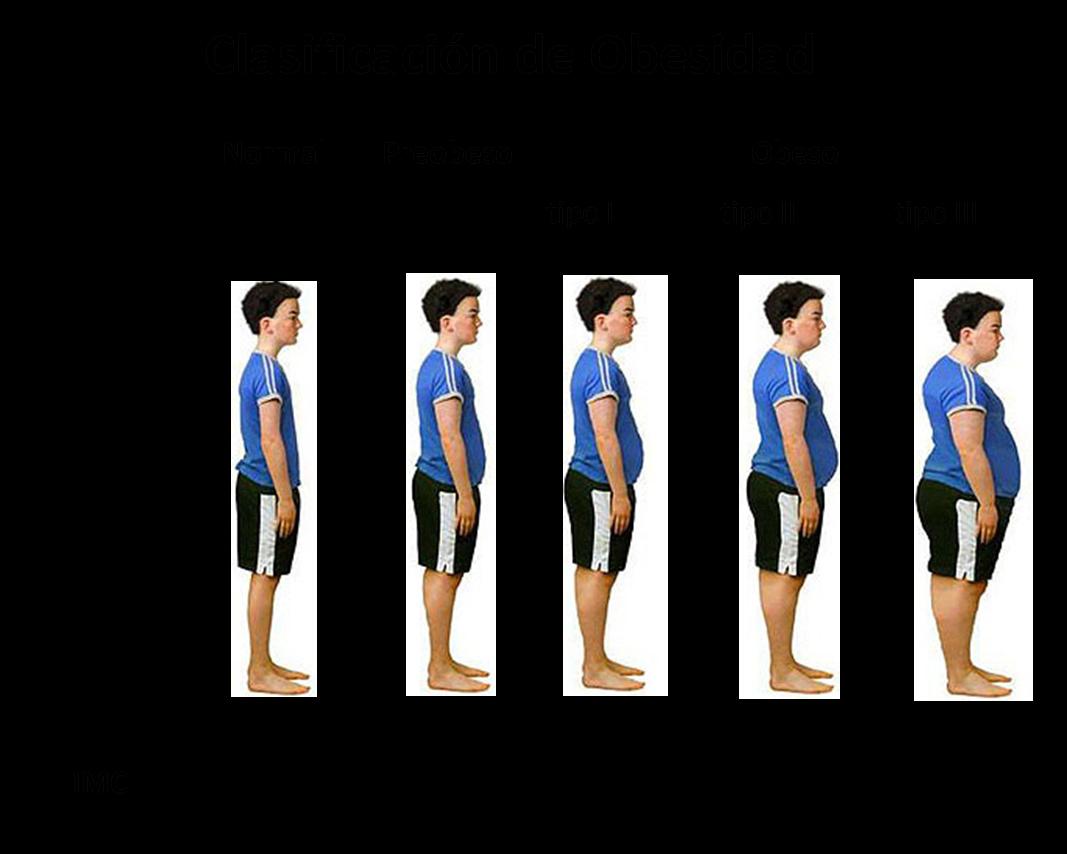 Perder grasa pectoral image 9
