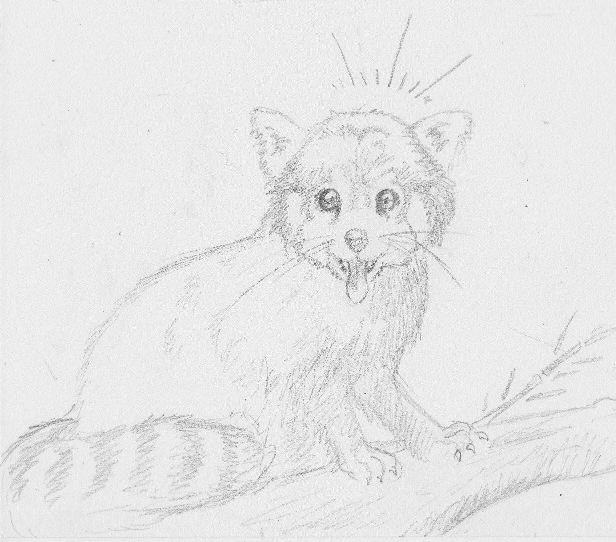 Le sablier de chronos girafe et panda roux - Panda roux dessin ...