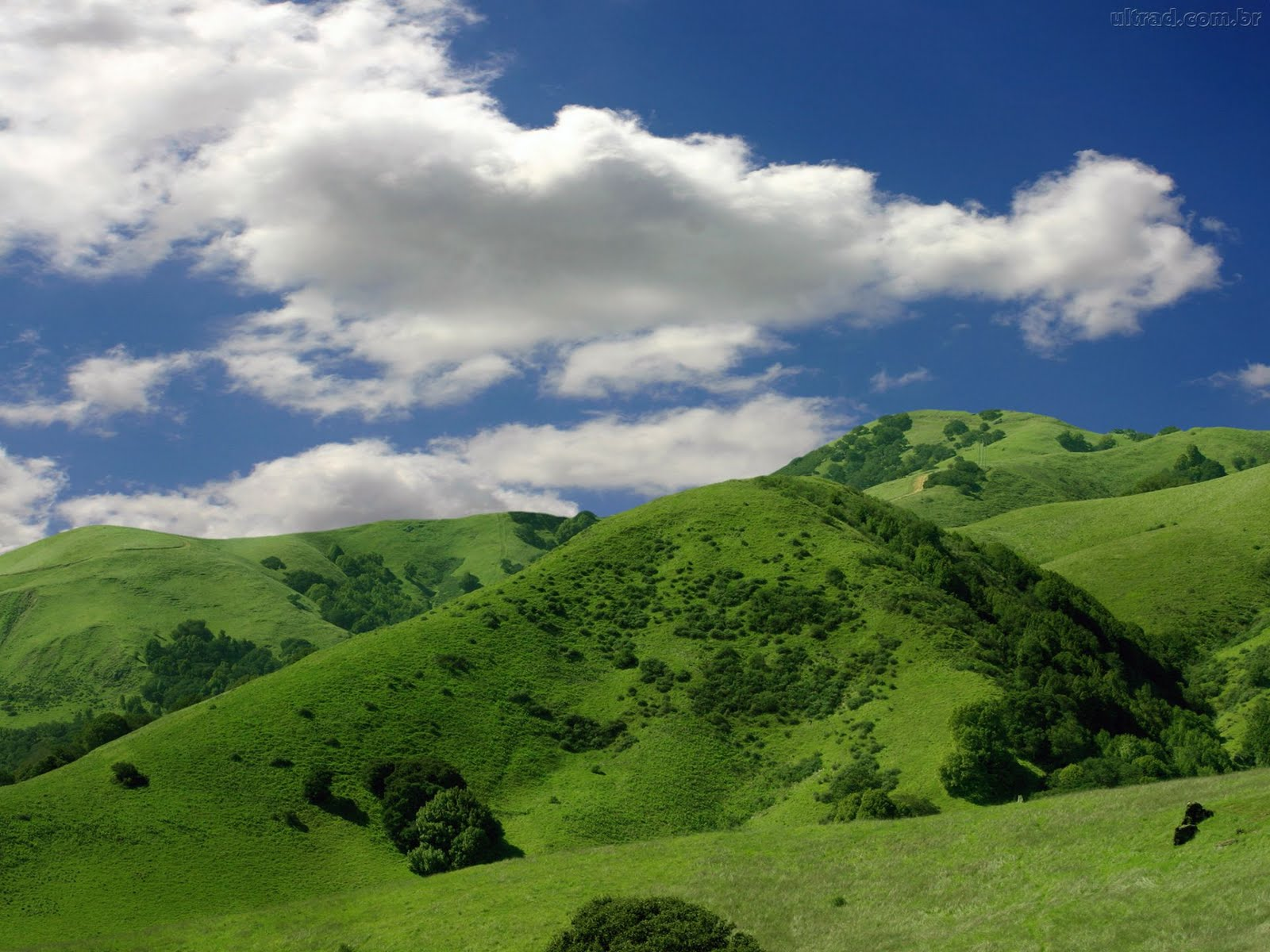mountain and the greenary - photo #33