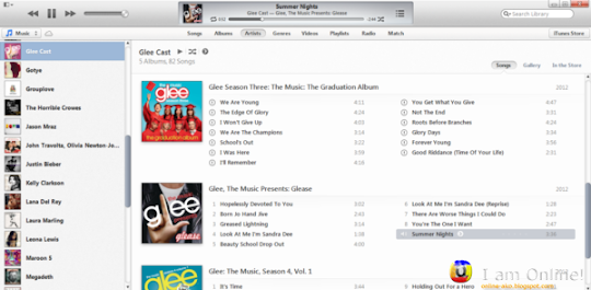 iTunes 11 Artists Tab