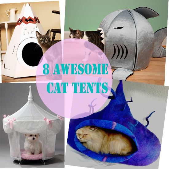 8 Awesome Cat Tents For Your Fur Kid & 8 Awesome Cat Tents For Your Fur Kid - Meow-Cat.com