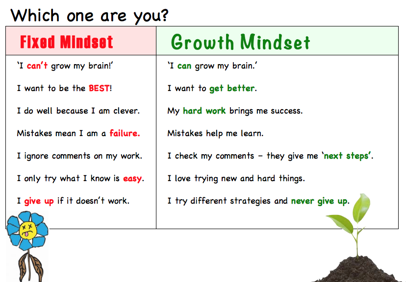 Ako: Teacher Learning: Growth Mindset - Carol Dweck