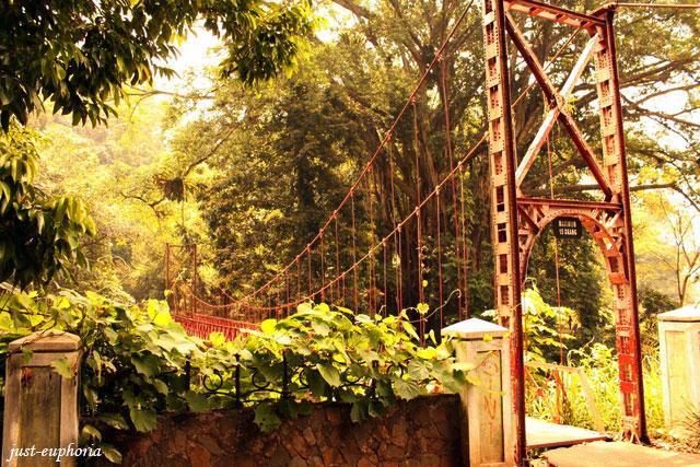 red bridge at kebun raya bogor