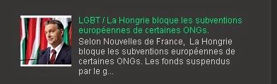 LGBT / La Hongrie bloque les subventions européennes de certaines ONGs.