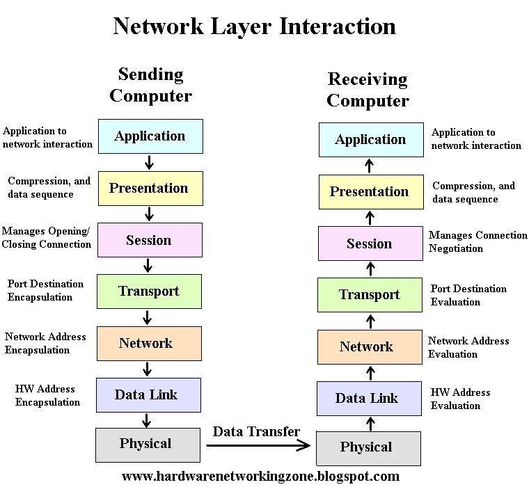 Osi Model Concept Hardware Networking