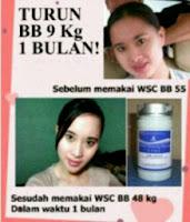 Distributor pelangsing biolo wsc batam