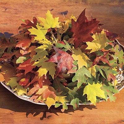 decorar con hojas