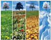 Comparing Seasons