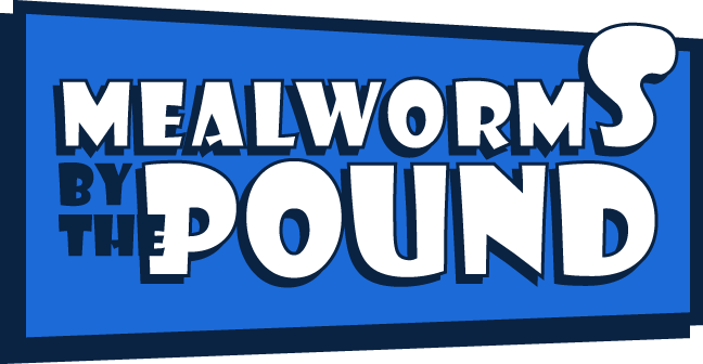 Mealworms By The Pound
