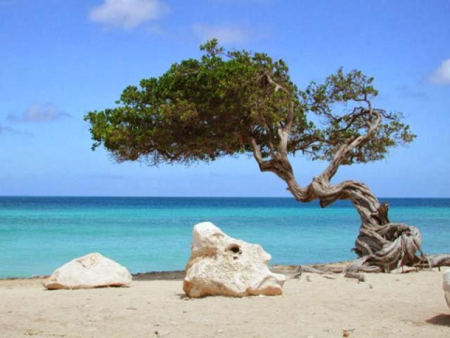туры +на сардинию