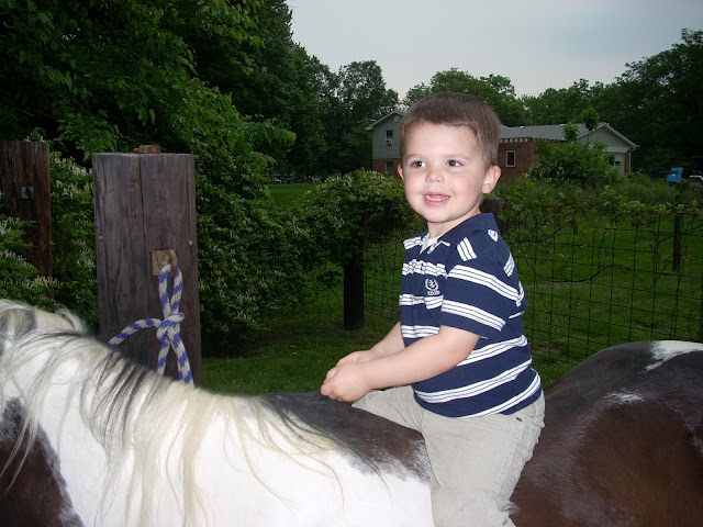child riding on a pony