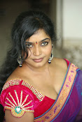 Jayavani hot photos in saree-thumbnail-2