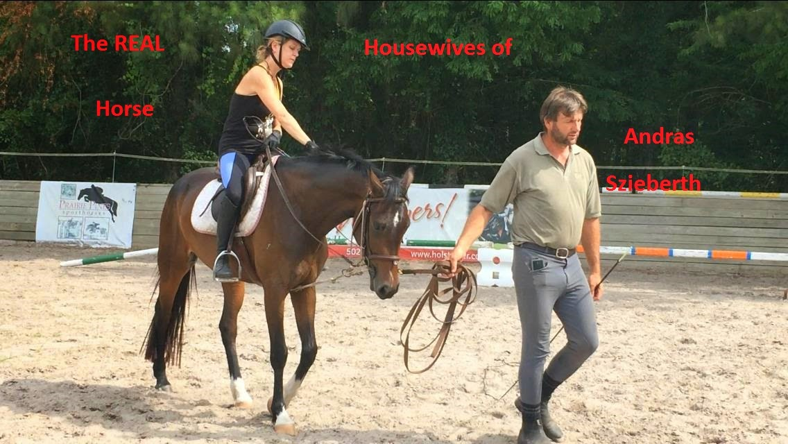 The Real Horse Housewives of Andras Szieberth